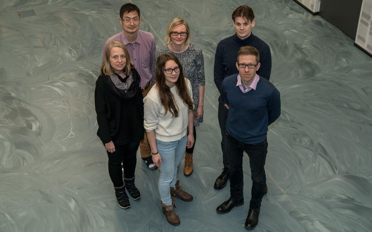 Apulaisprofessori Pekka Taimenen tutkimusryhmä tutkii urologisia ja keuhkoperäisiä syöpiä.