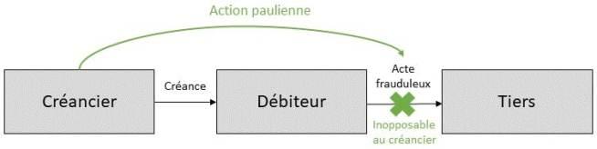 Schéma action paulienne