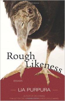 Rough Likeness