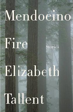 Mendocino Fires