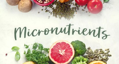 , Why Are Mirco-Nutrients Important for Our Body?