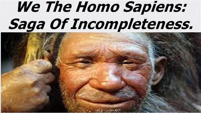 The Homo Sapiens