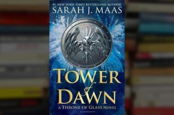 Read the first 180+ pages of 'Tower of Dawn' for free