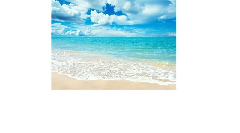 "September 30 - October 20, 2021 1st Line Writing Prompt ""Ocean"""