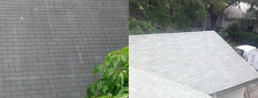 How to Keep Your Asphalt Shingles Clean Follow These Tips – Cleaning Roof Shingles
