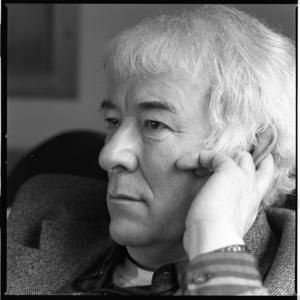 Seamus Heaney - Fiddlers Green