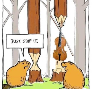 Beavers Fiddle