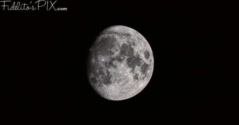 moonshine - s1_D5X0582-X2