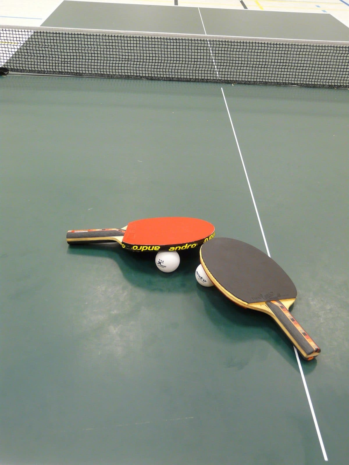 The Material Of Your Ping Pong Table Will Differ Mostly Depending On Where  You Intend To Use It. Indoor Models Will Generally Have Less Variation In  The ...
