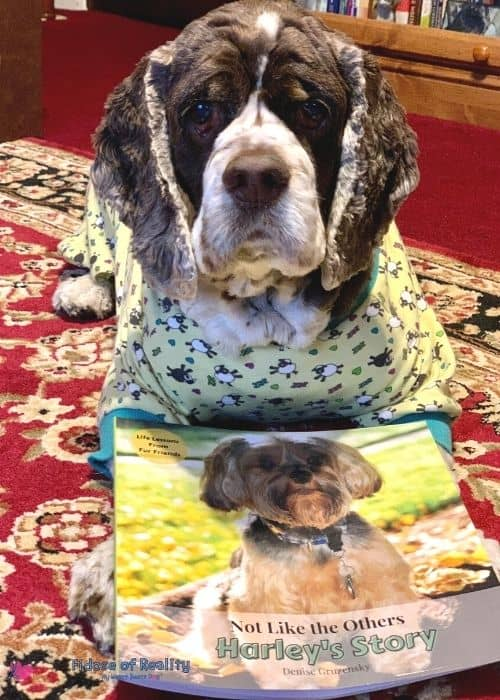 dog with a children's book