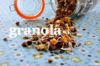 Granola 1 - fiekefatjerietjes