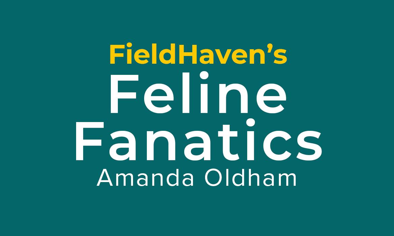 Feline Fanatics: Amanda Oldham