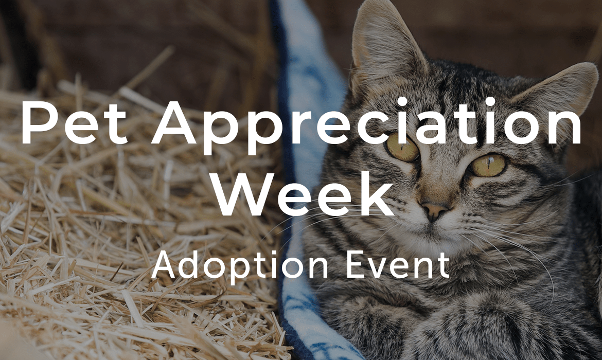 Pet Appreciation Week Adoption Event