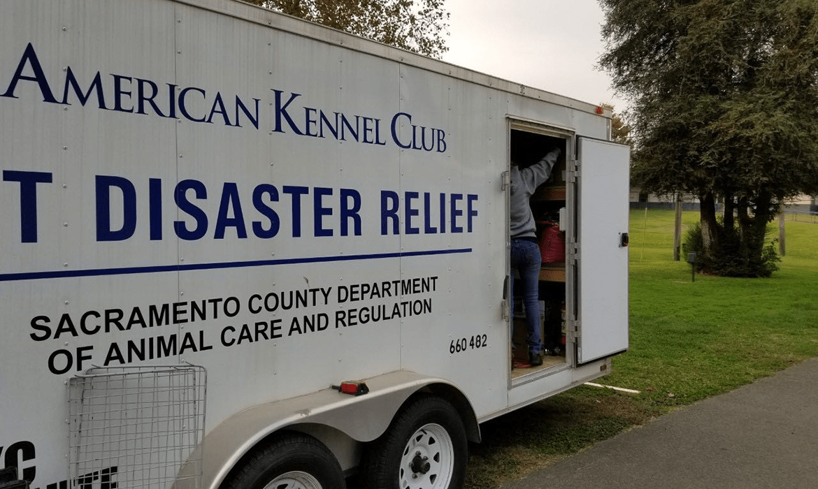 Camp Fire Evacuation Center – Day One