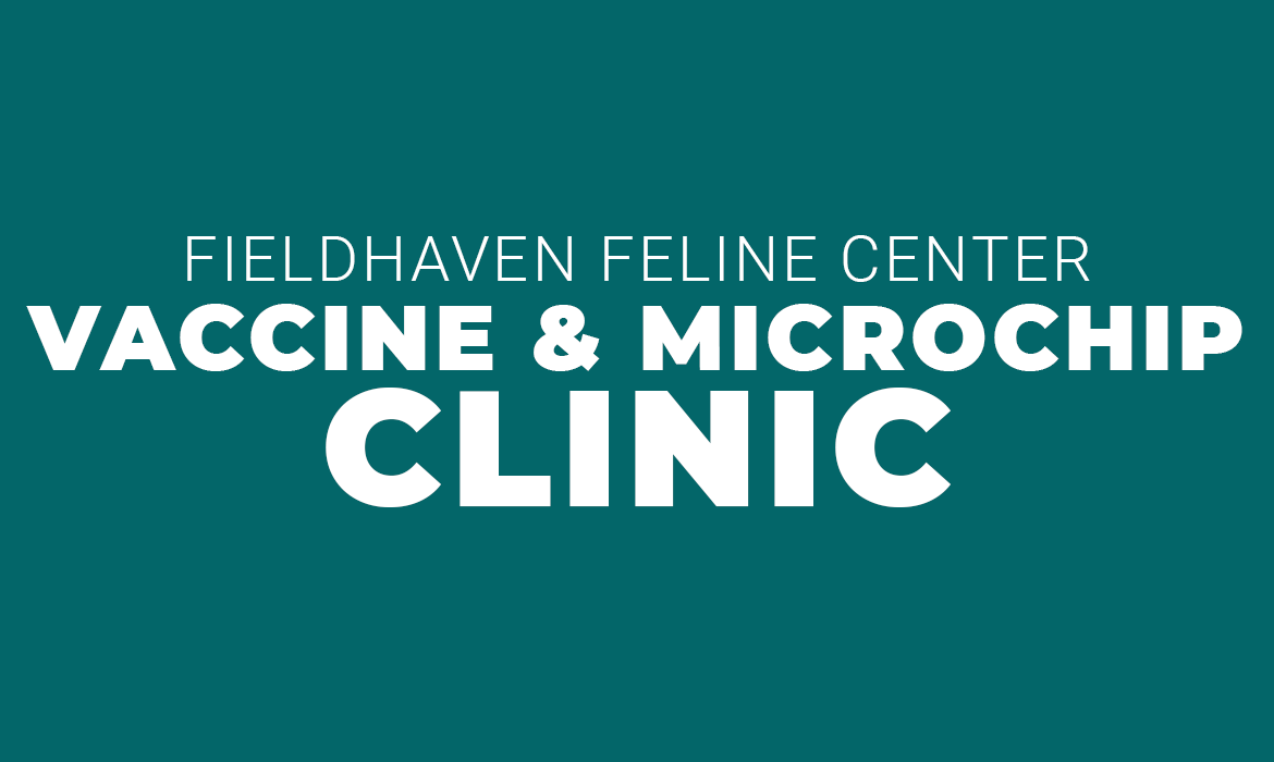 Microchip and Vaccine Clinic – Lincoln