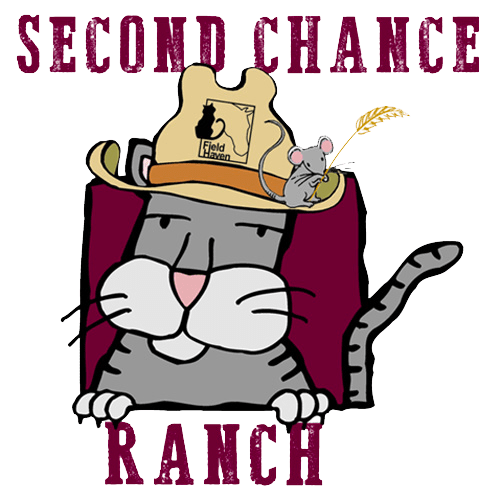 newsletter-winter-2017-second-chance-ranch-1_500x500