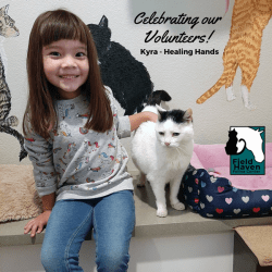 FieldHaven Volunteer Kyra petting a white and black cat.