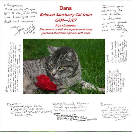The memorial for Dana, signed by board members and volunteers