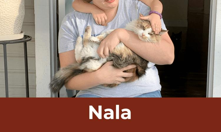 12 Saves of Christmas – Nala – FieldHaven's Heartwarming Save #10