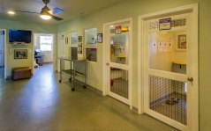 The hallway inside of FieldHaven Feline Center, showcasing three of FieldHaven's shelter rooms.