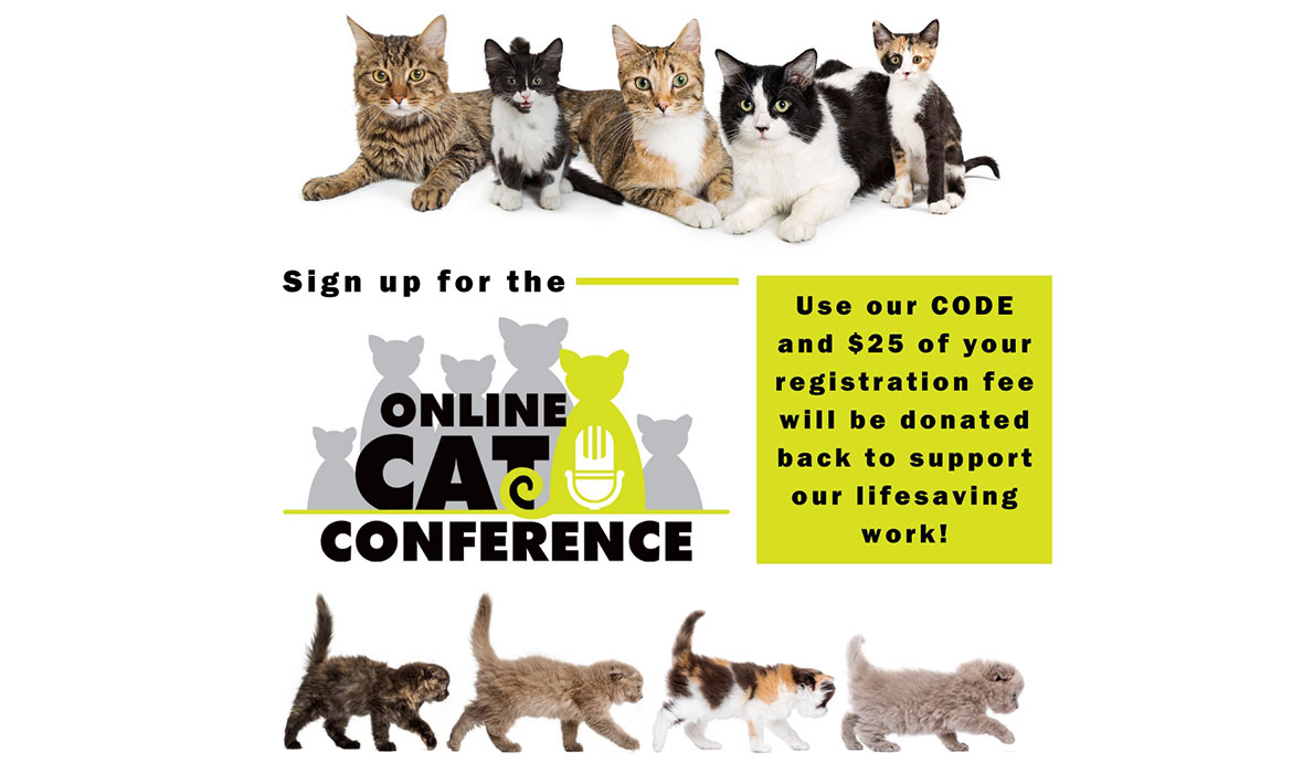 Sign up for the Online Cat Conference