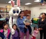 bunny2cr