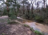 Slaty Creek