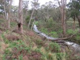 The West Branch of the Moorabool River
