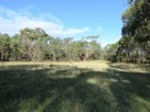 open grass area in the reserve