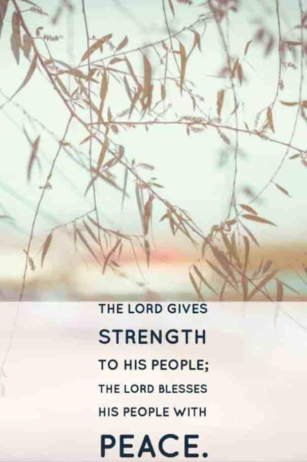 praying Psalm 29
