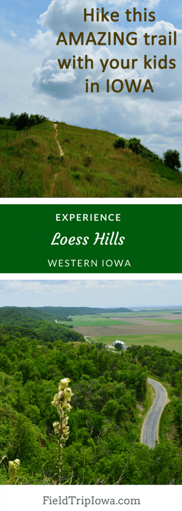 Visit Loess Hills in Iowa with your children. Information to trailheads, roads and more. Stunning Murray Hill Scenic Overlook. Must Have Iowa Bucket List!