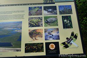 Ledges State Park Lost Lake Sign