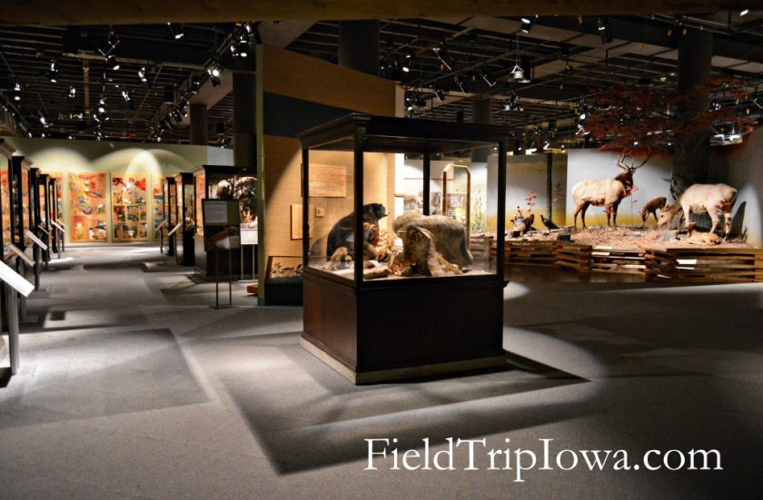 State Historical Museum of Iowa display cases