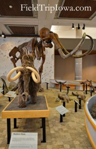 State Historical Museum of Iowa Mammoth