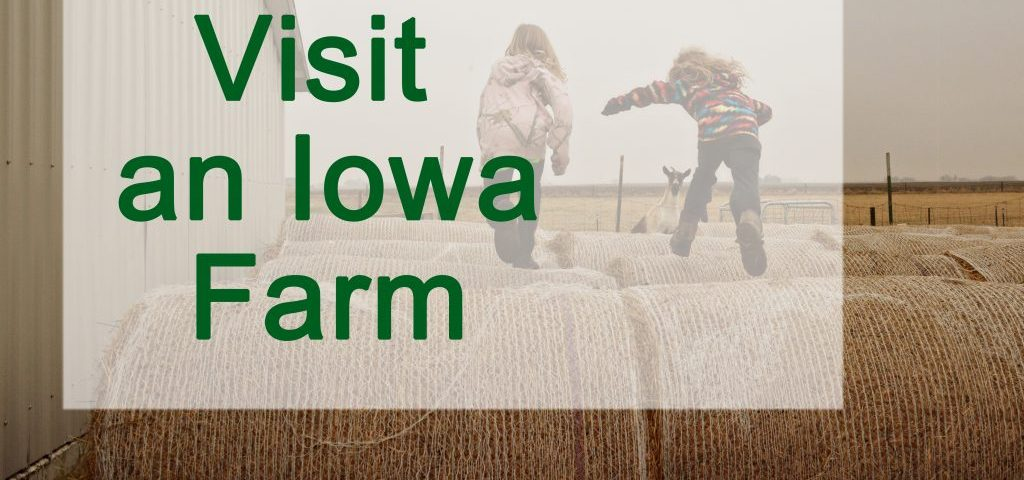 Girls have fun jumping on hay bales on a visit an Iowa Farm.
