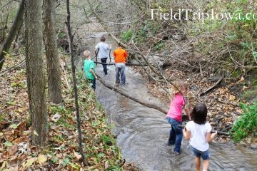 Margo Frankel Woods State Park Children hauling logs in creek