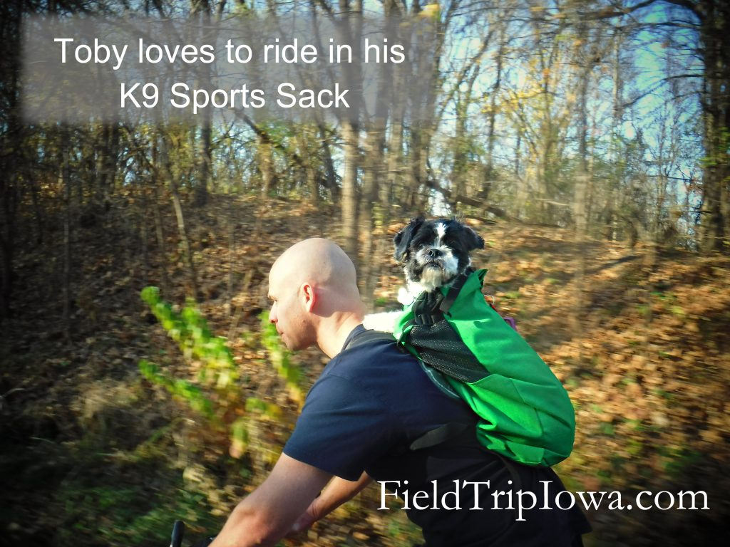 dog on bike in K9 Sport Sack