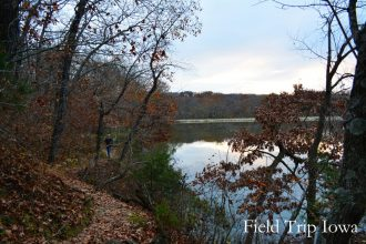 Narrow footpath along the lake at Wallace State Park is fun and beaitiful! Only minutes off I35 in MO.