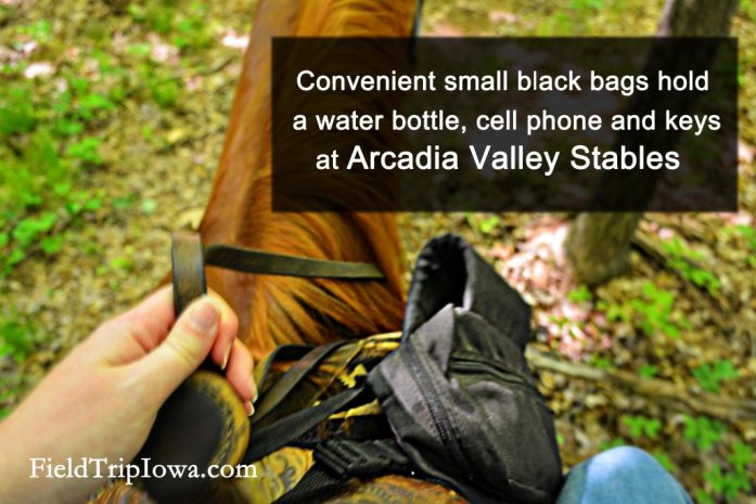 Saddle bags at Arcadia Valley Stables by Plain & Fancy BB.