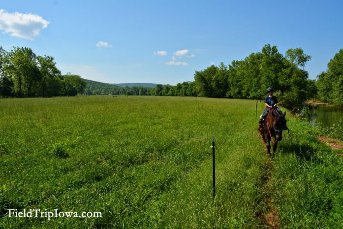 Trail ride along Stouts Creek at Arcadia Valley Stables by Plain & Fancy BB.