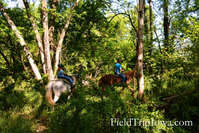 Wooded timber trail ride at Arcadia Valley Stables by Plain & Fancy BB.