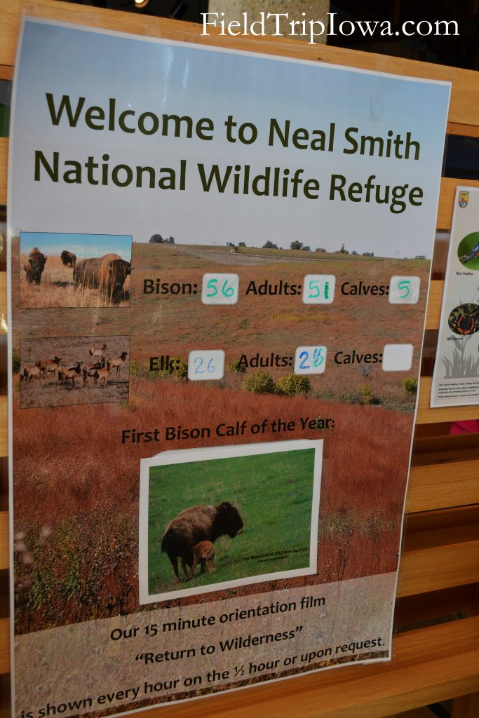 Bison and Elk count sign at Neal Smith National Wildlife Refuge