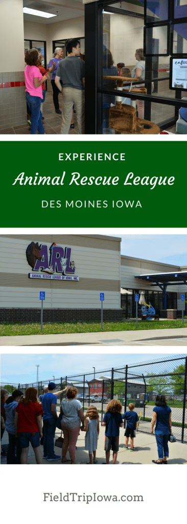 Students ages 7+ can go behind the scenes at the Animal Rescue League of Iowa and learn how an animal goes through the adoption process!