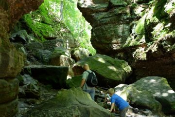 Beautiful gorge in in Parfrey's Glen Natural Area near Devil's Lake Wisconsin
