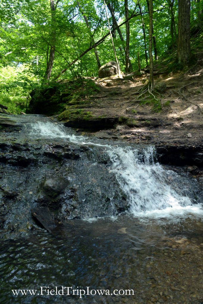 Waterfall at in Parfrey's Glen Natural Area near Devil's Lake Wisconsin
