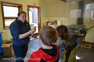 Children learn about the process of making maple syrup at Hartmand Reserve Nature Center in Cedar Falls Iowa.