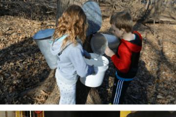 Seven Fun Things To Do With Kids In Cedar Falls & Waterloo