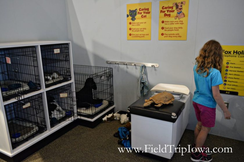 Girls plays in vet shop at Family Museum in Daventport