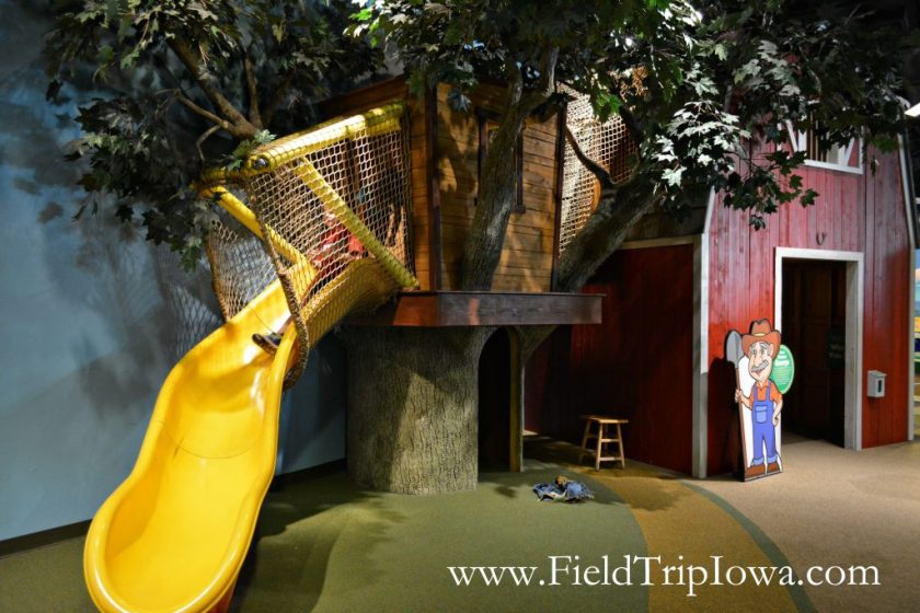 Boy goes down slide at Family Museum in Daventport