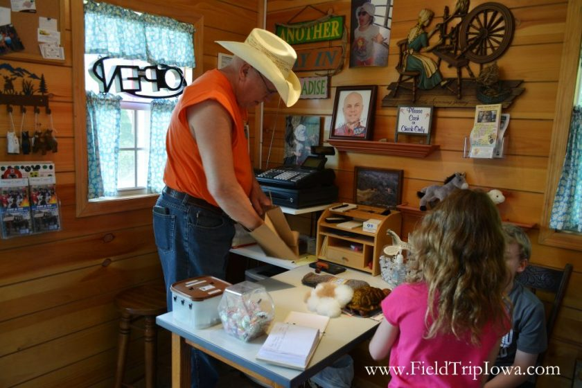 Children check out items at the gift shop at Hidden Paradise Alpacas Farm in IL